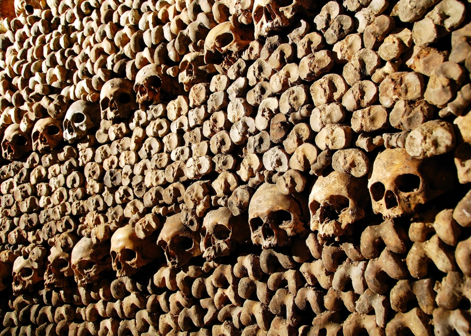 Kid Travel Book Paris Catacombes
