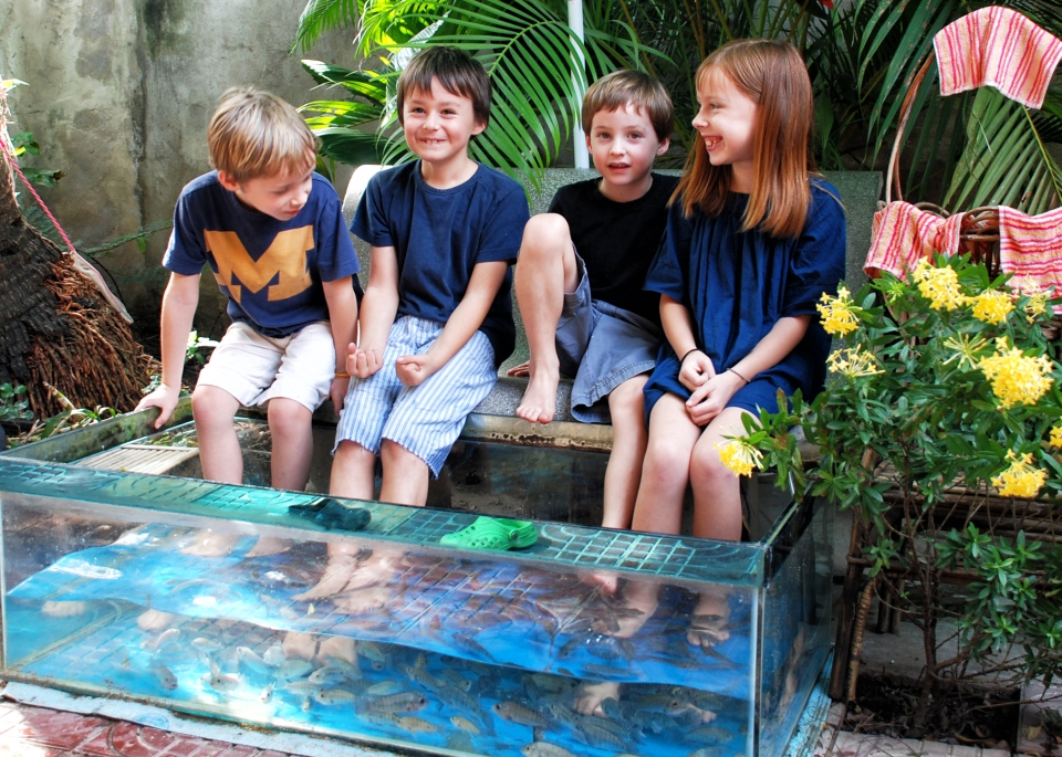 leap-hop-blog-cambodia-fish-pedicure
